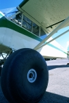 Piper Cub with  tundra tires